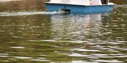 Velencei-tó programok 2020. Fesztiválok, események, rendezvények a Velencei-tónál