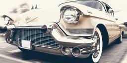 Amerikai autós találkozó Levelek 2021