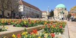 Pünkösd Pécs 2020. Wellness szállás városnéző programokkal, csokikóstolóval várjuk a Makár Hotelben