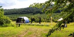 Örvényeshegy Piknik 2021. Összművészeti Fesztivál Zala megyében