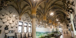Vajdahunyadvári programok a Mezőgazdasági Múzeumban az őszi szünetben 2020-ban