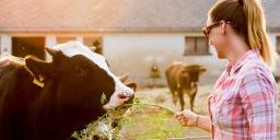 Garabonciás Farm