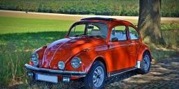 Somogyi VW Nyár 2021. Nemzetközi Népautós Fesztivál