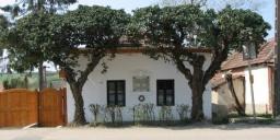 Gárdonyi Géza Honismereti Ház
