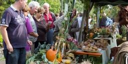 Gyenesdiási Burgonya Fesztivál 2021. Burgonyanap