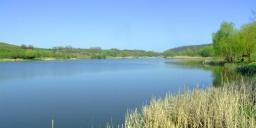 Bakonycsernye horgásztavak