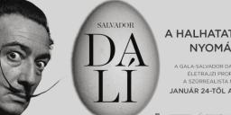 Salvador Dalí élete. A halhatatlanság nyomában, portréfilm a szürrealizmus mesteréről