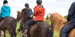 Tiszafüredi lovastúra, lovaglási lehetőség wellness szállással a Balneum Hotelben