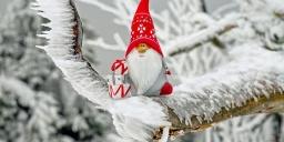 Téli szüneti wellness pihenés  animációs programokkal a Tisza-tónál, a Balneum Hotelben