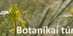 Botanikai túra a Ság hegyre a Kemenes Vulkánparkból