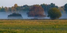 Szarvasbőgés program 2020. Szarvasbőgés és csillagles az Őrjegben, a Kiskunsági Nemzeti Parkban