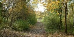 Kecskeméti Arborétum programok 2020