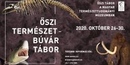 Múzeumi tábor 2020. Őszi Természetbúvár tábor a budapesti Magyar Természettudományi Múzeumban