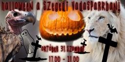 Halloween a Szegedi Vadasparkban 2020