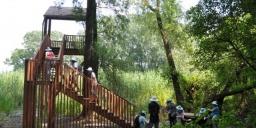 A Dráva élővilága tanösvény, változatos és különleges élővilág a Dráva mellett