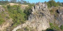 Ság-hegy élővilága, botanikai-zoológiai tanösvény az Őrségi Nemzeti Parkban Celldömölkön