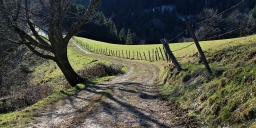 Hosszú-völgy tanösvény