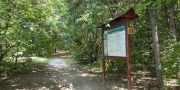 Látó-hegyi örökerdő tanösvény