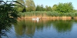 Mezei Horgásztanya