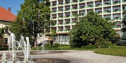 Aranyhomok Business-City-Wellness Hotel**** Kecskemét