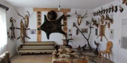 Dorbi Emléktárgybolt Trófea- és Kőzetbemutató Bakonybél