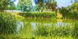 Büki Horgásztó