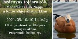 Madarak és Fák Napja 2021. Ünnep a Körös-Maros Nemzeti Parkban