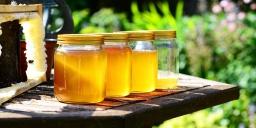 Nemzetközi Mézvásár és Méhésztalálkozó Jászberény 2021