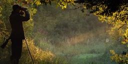 Kaszó Erdőgazdaság