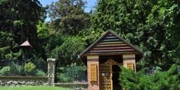 Pécsi Pintér-kert Arborétum programok 2021