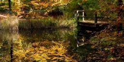Budakeszi Arborétum programok 2021
