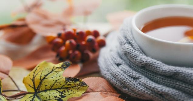 Wellness akció Zalakaroson, őszi pihenés ajándék fürdőbelépővel a Forrás Hotelben