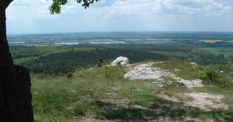 Dunaalmás kilátópont és Kőpite túrakörök tanösvény