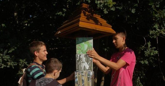 Rezgőnyár tanösvény Őriszentpéter, kirándulás az Őrségi Nemzeti Parkban