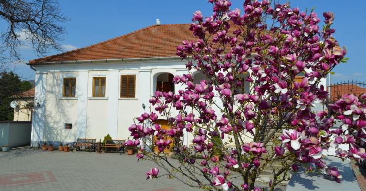 Bagolyvár Pincészet & Vendégház