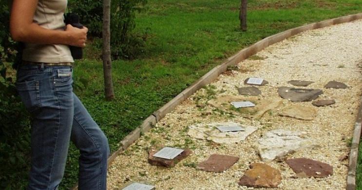 Csopaki tanösvény, mini ökotúra a Balaton-felvidéki Nemzeti Park központjában
