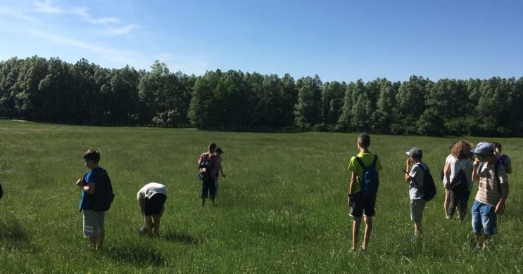 Osztálykirándulás a Bakonyban, egész évben várjuk kisvonatos bakonyi kirándulásra a diákokat