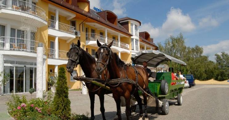 Kis-Balatoni kirándulás lovas sétakocsikázás történelmi kalandpark és farmlátogatással Zalakarosról