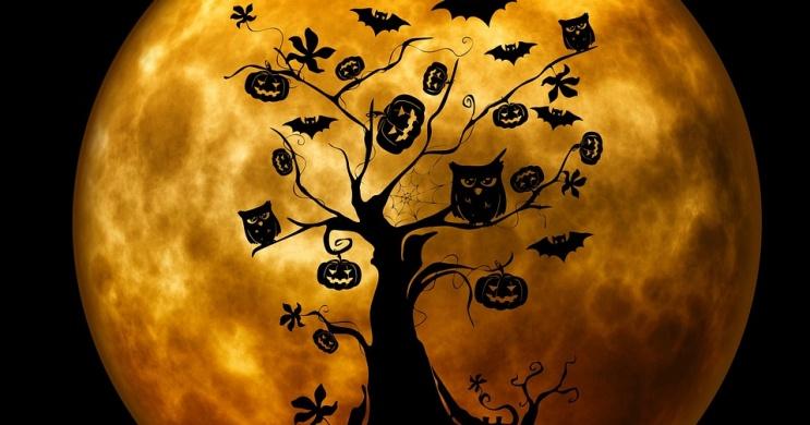 Dunakeszi Halloween 2019. Szellemes programok, események, rendezvények Dunakeszin
