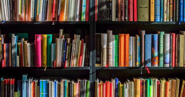 Lajosmizse könyvtár program