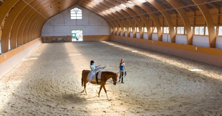 Fedeles lovarda bérelhető a Hétkúti Lovasparkban Móron