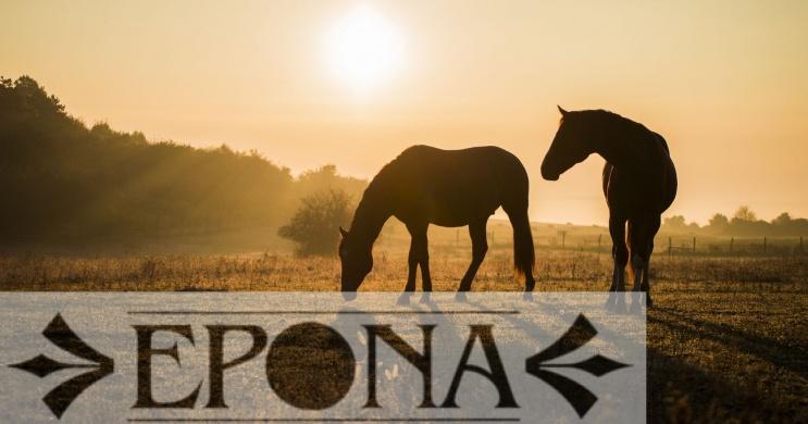 Epona Spanyol Lovasiskola