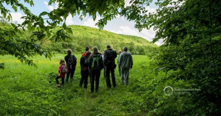 Barát-réti tanösvény Felsőtárkány, ökotúra a Bükki Nemzeti Parkban