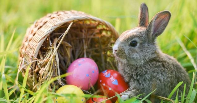Tisza-tavi Húsvéti és tavaszi szüneti wellness pihenés gazdag programkínálattal a Balneum Hotelben
