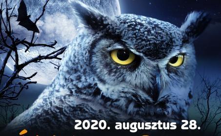 Állatkertek Éjszakája Miskolci Állatkert 2020