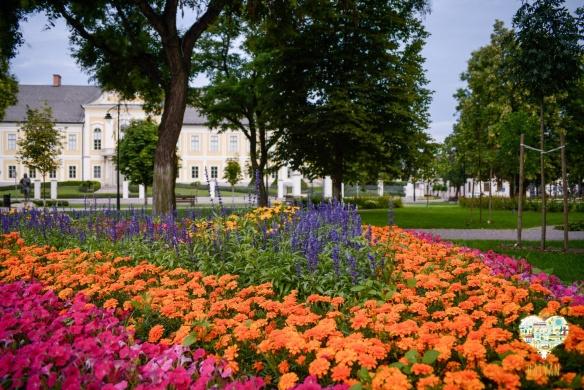 Tavaszi Fesztivál Hatvan