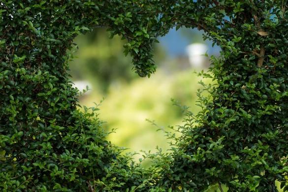 Zöld Szív Fesztivál