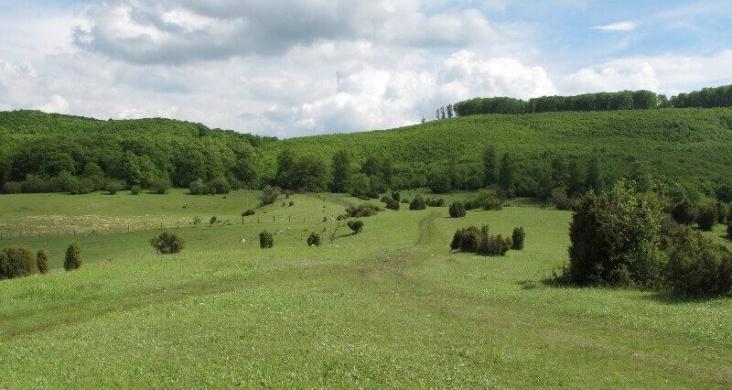 Nagymező-Kis-kőháti-Zsomboly tanösvény Szilvásvárad, ökotúra a Bükki Nemzeti Parkban