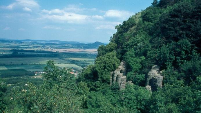 Szent György-hegyi kirándulóerdő és tanösvény, tanúhegy túrák a Balaton-felvidéken