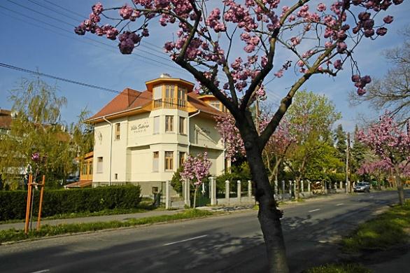 Villa Sakura Panzió Sopron